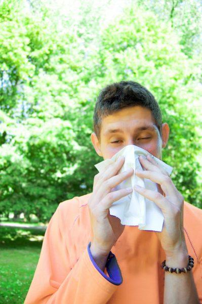 Spring Allergy blog